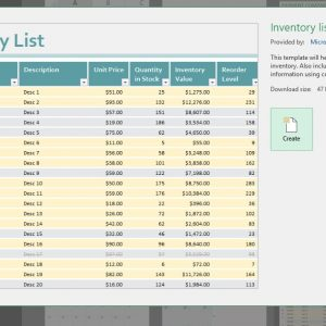 Microsoft Excel Beginner and Advanced all-in-one